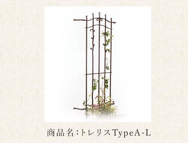 商品名:トレリスTypeA-L(Trellis)※単品部材【壁のアクセントアイテム 植物をからませるガーデンアイテム おしゃれなロートアイアン調】
