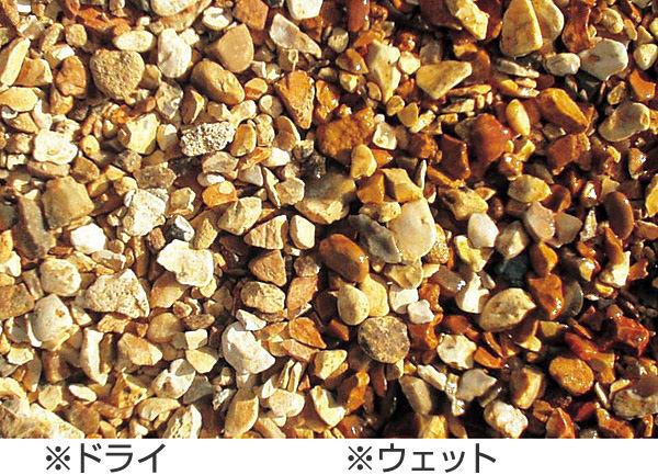 4袋セットウェセックスゴールド 4袋セット, ダイシン+1:f06df7c3 --- a-maalari.fi