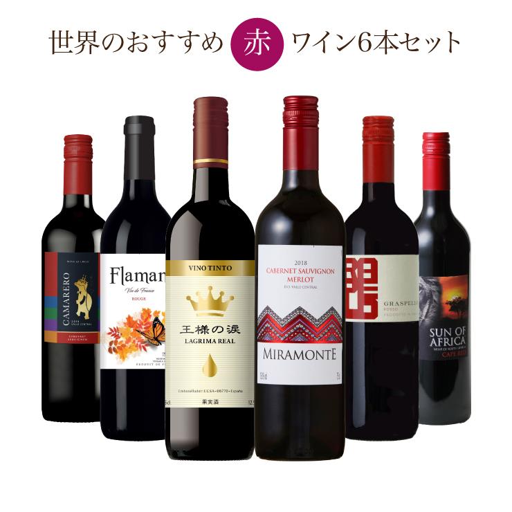 送料無料 ソムリエが選ぶ 世界の赤ワイン セット 750ml×6本 超特価SALE開催 チリ スペイン イタリア 南アフリカ 賜物 フランス