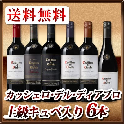 チリ最大のワイナリーであるコンチャ イ トロが誇るナンバーワンブランド 送料無料 カッシェロ デル 推奨 上級キュベも入った赤ワイン6本セット ディアブロ 発売モデル