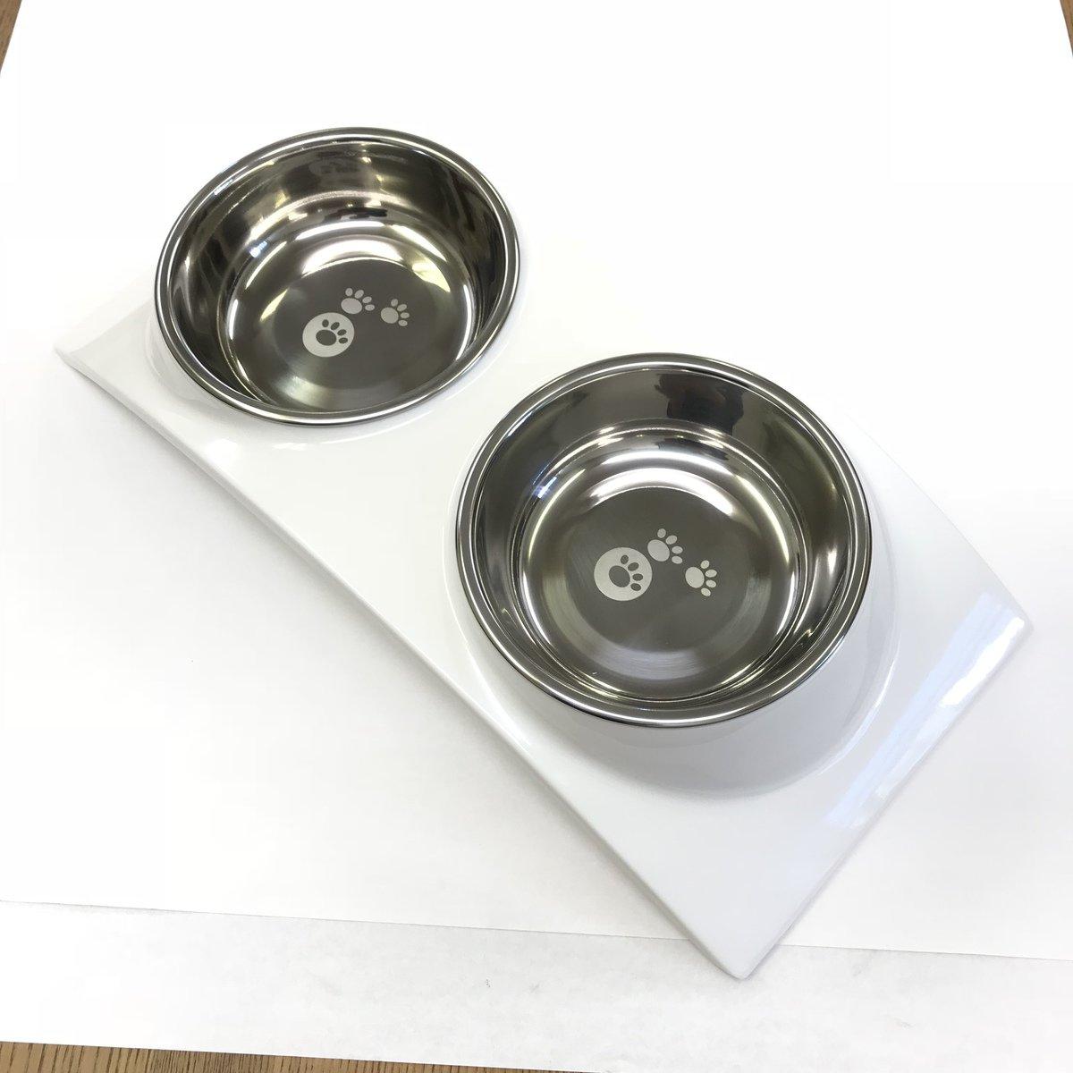 トムキャット [食器]レインボー ディナーセット M ホワイト×12入【送料無料】