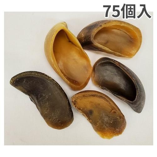 レッドバーン 牛のヒヅメ  ナチュラル  75個入【送料無料】