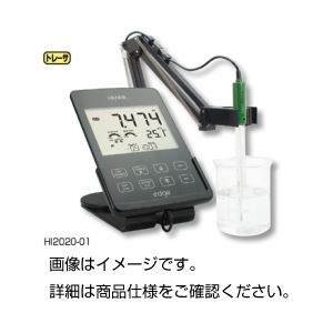 全国送料無料 ハンナ pH・EC・DOメータ タブレット型pH計水質計 edge HI2040-01