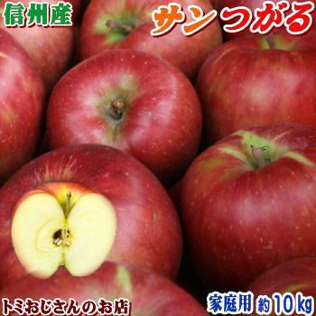 2021年産の採れたてりんご 送料無料 長野県産 サンつがる Cランク 家庭用 約10kg 28-36玉 訳あり 返品不可 色ムラなど 日本最大級の品揃え キズ 信州りんごは甘~いよ 秋のりんごシーズン最初の品種