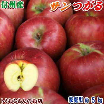 2021年産の採れたてりんご 送料無料 長野県産 サンつがる 売買 Cランク 家庭用 約5kg 引出物 訳あり 色ムラなど 秋のりんごシーズン最初の品種 キズ 14-18玉 信州りんごは甘~いよ