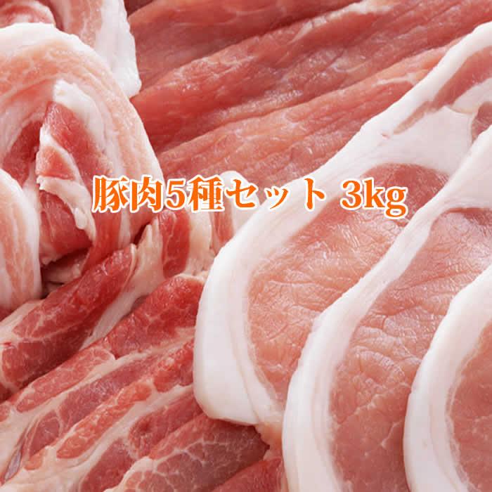 鹿児島産豚肉セット3kg 豚ローステキカツ 豚バラ焼肉 豚モモスライス 豚肉きりおとし 豚切り落とし 豚ミンチ 豚カルビ 焼き肉 生姜焼き 送料無料カード決済可能 しょうが焼き 豚丼 しゃぶしゃぶ 水煮 豚肉セット3kg 焼肉用 テキカツ用 商品内容豚ロース 贈り物 鹿児島産 敬老の日 2021 鍋 ギフト 豚バラ 合計3kgです 新生活 こまぎれ 豚モモ