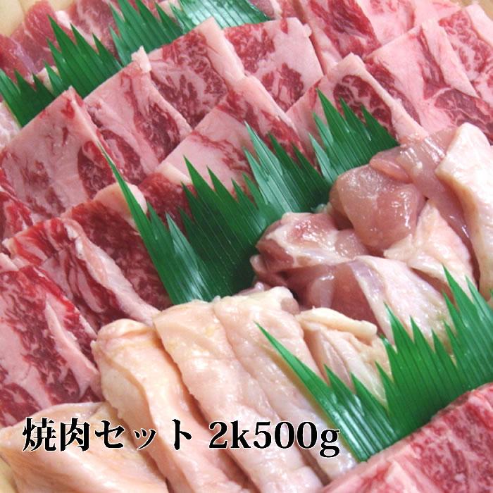 送料無料 焼肉セット 2k500g 牛肉 焼肉 カルビ、牛タン オーカク(ハラミ)豚カルビ 鶏モモ 黒毛和牛肉 国産 焼き肉セット バーベキューセット B bbq 肉 セット 焼肉 お試し バーベキュー 肉 誕生日プレゼント 母の日 母の日ギフト 父の日 父の日ギフト