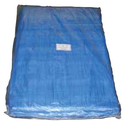 TA#22001010 ブルーシート 10×10 #2200 10m×10m 2枚