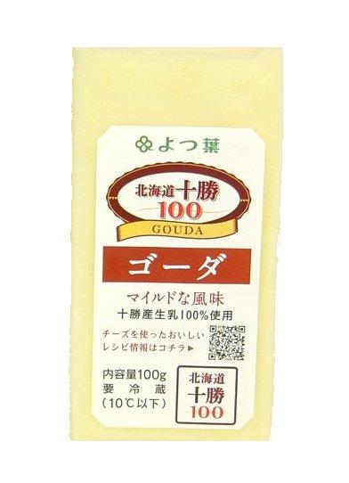 よつ葉 ゴーダチーズ 100g×5個入り 2020A/W新作送料無料 開催中