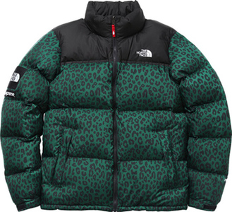 b810afb96 Supreme×the NORTH FACE Nuptse Down Jacket green Leopard