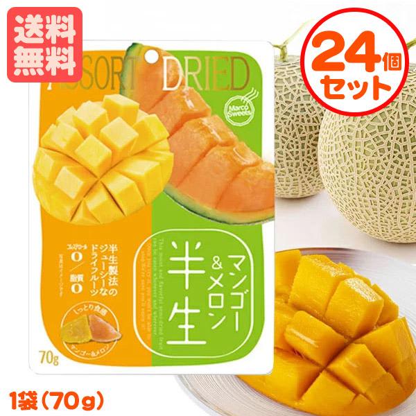 まとめ買い送料無料の24個セット 半生フルーツ 買い取り マンゴー セール メロン 70g×24個 しっとり食感 まとめ割引 ドライフルーツ 送料無料