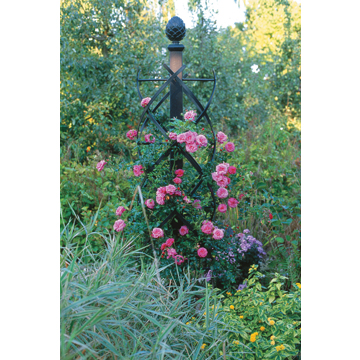 高価値セリー 【Charleston Rose Pillar R32チャールストンローズピラー R32】本格派 ドイツ製 ガーデニング 庭いじり エクステリア 庭 飾り バラ 薔薇 クレマチス 蔓植物 上質 おしゃれ 丈夫 ガーデンアクセサリー, 浜頓別町 e6874a17