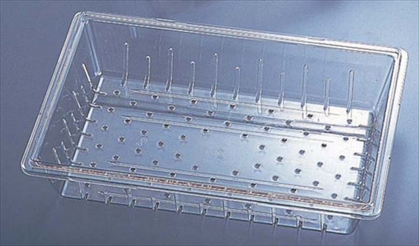 CAMBRO キャンブロ フードボックス用コランダー フルサイズ18268CLRCW 6-0196-0501 AHC5001