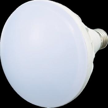 トラスコ中山(株) TRUSCO LED投光器用 20W LED球 [ RTL20W ]