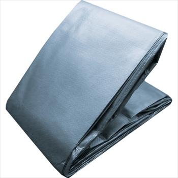 一番人気物 トラスコ中山(株) TRUSCO シルバー オレンジブック 5年シート 幅5.4mX長さ5.4m シルバー TP55454SV [ TP55454SV [ ], journal standard Furniture:ddee427c --- rekishiwales.club