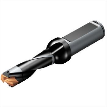 サンドビック(株)コロマントカンパニー SANDVIK サンドビック コロドリル870 刃先交換式ドリル [ 870125011L165 ]