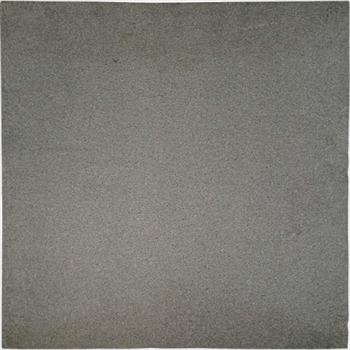 (株)オーデン オーデン ニッケル多孔体フィルター470mm×470mm HG-50NT オレンジB [ HG50NT ]