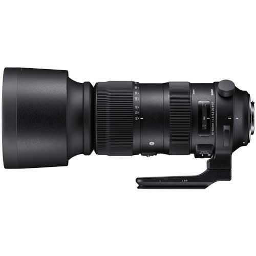 シグマ SIGMA Sports 60-600mm F4.5-6.3 DG OS HSM ニコン用