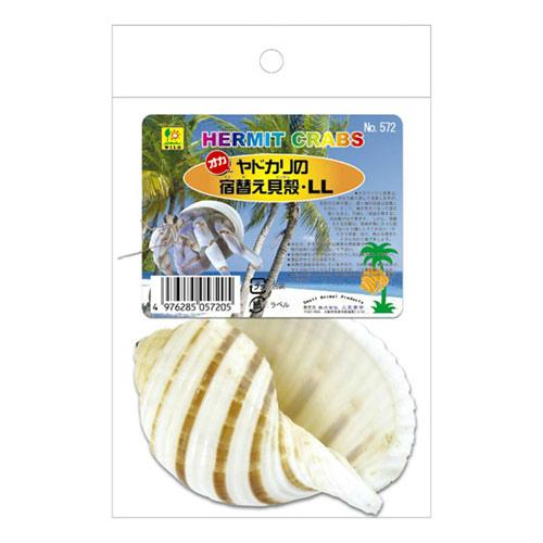 期間限定で特別価格 オカヤドカリの宿替貝殻 LL 572 品質保証 SANKO 貝殻 サンコー ヤドカリ用 三晃