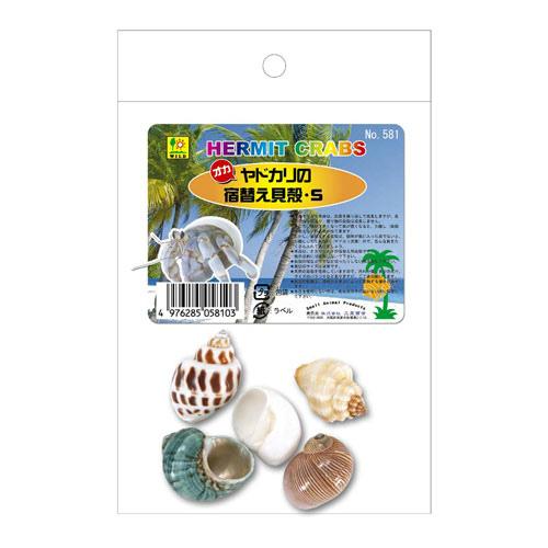 オカヤドカリの宿替貝殻 S 581 与え SANKO 三晃 出色 ヤドカリ用 サンコー 貝殻