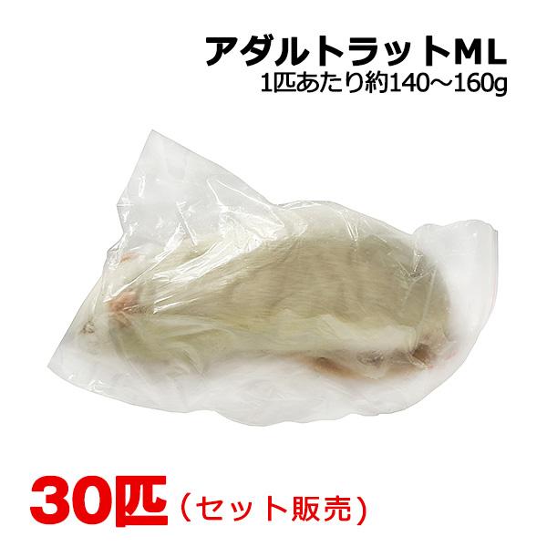 冷凍 アダルトラット MLサイズ 30匹