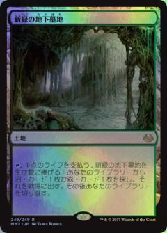 新緑の地下墓地 レア 無色 Foil 【中古】 【ランクA】 MM3-249 MTG マジックザギャザリング