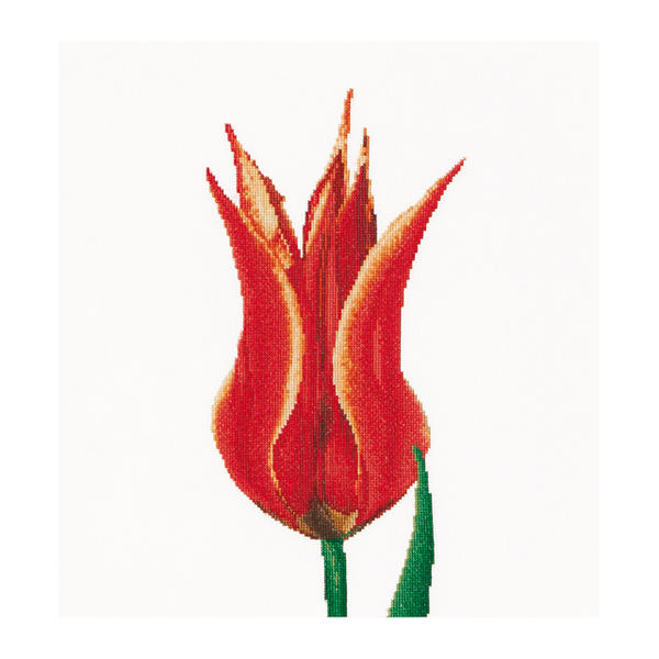 Thea Gouverneur クロスステッチ刺繍キットNo.515 「Red / Yellow Lily flowering tulip」(赤と黄色のユリ咲き系チューリップ 花) オランダ テア・グーヴェルヌール 【取り寄せ/納期40~80日程度】