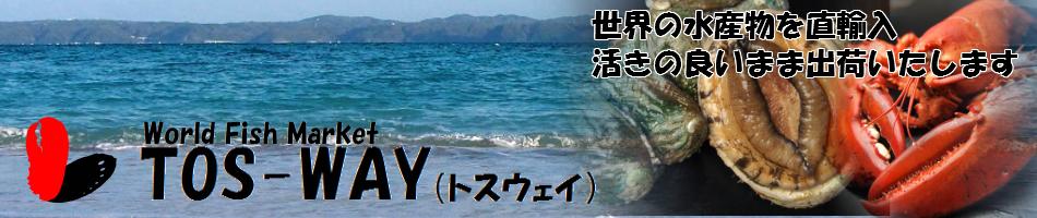 World Fish Market TOS-WAY:活オマール・活あわびを生け簀より直送にて販売いたします。