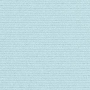 踊り衣裳 反物 駒絽色紋付着尺 東レシルック 奏美 水色 取り寄せ商品 日本の踊り 掲載 踊り絵羽 稽古 習い事 舞踊 民謡 発表会《女性用 レディーズ 洗える着物》 ポイント20倍