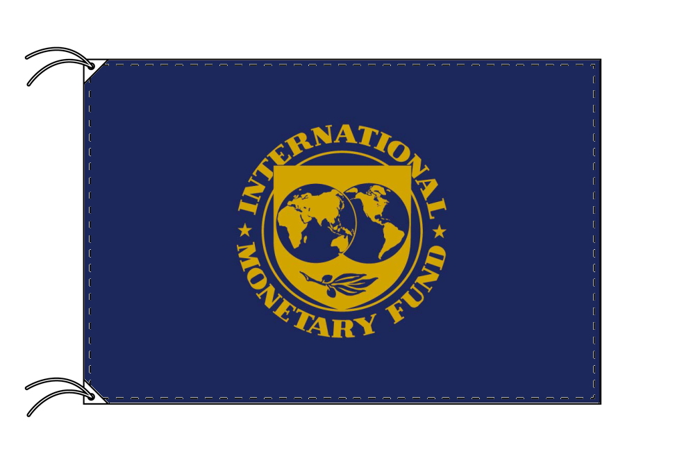 IMF 国際通貨基金 旗[100×150cm・高級テトロン製]受注生産