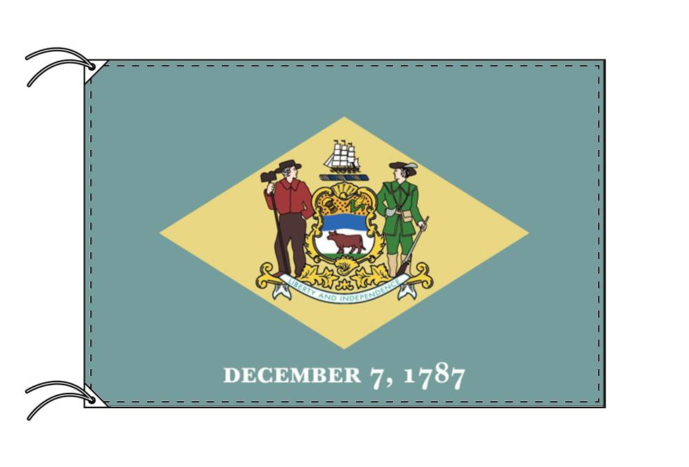 デラウェア州旗[アメリカ合衆国の州旗・100×150cm・高級テトロン製]