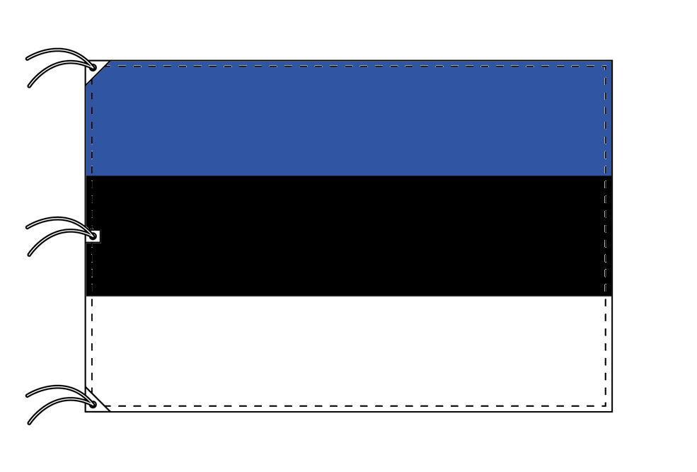 世界の国旗 エストニア国旗[200×300cm・高級テトロン製]NO.6号