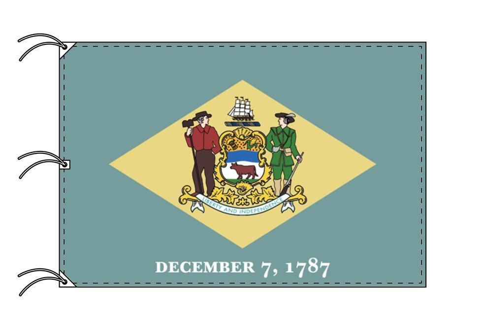 デラウェア州旗[アメリカ合衆国の州旗・140×210cm・高級テトロン製]