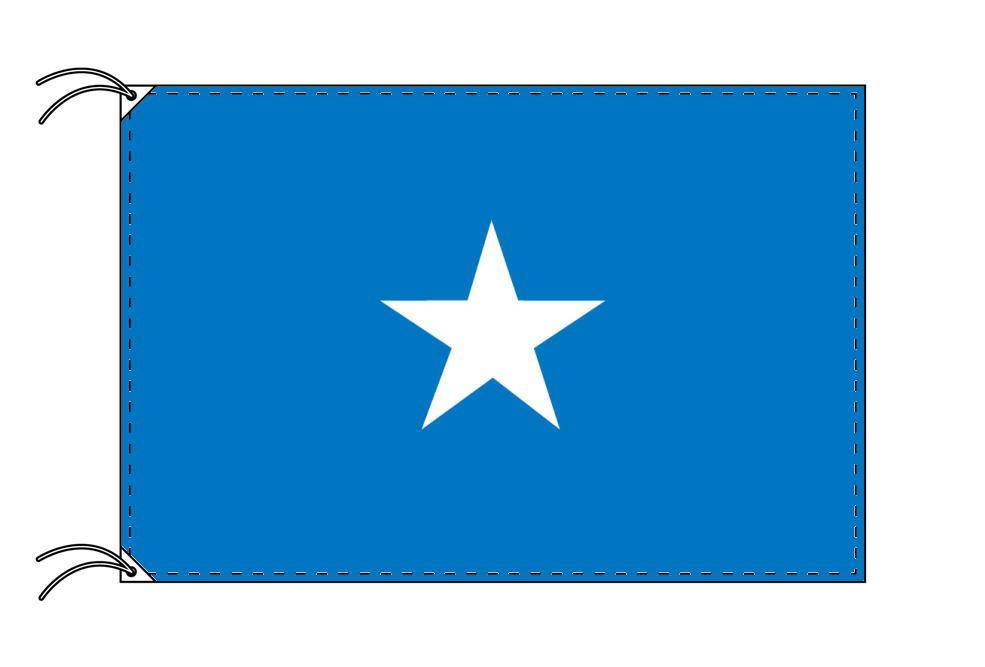 ソマリア・国旗セット[DX]【アルミ合金ポール・取付部品付・テトロン国旗 サイズ70×105cm】安心の日本製