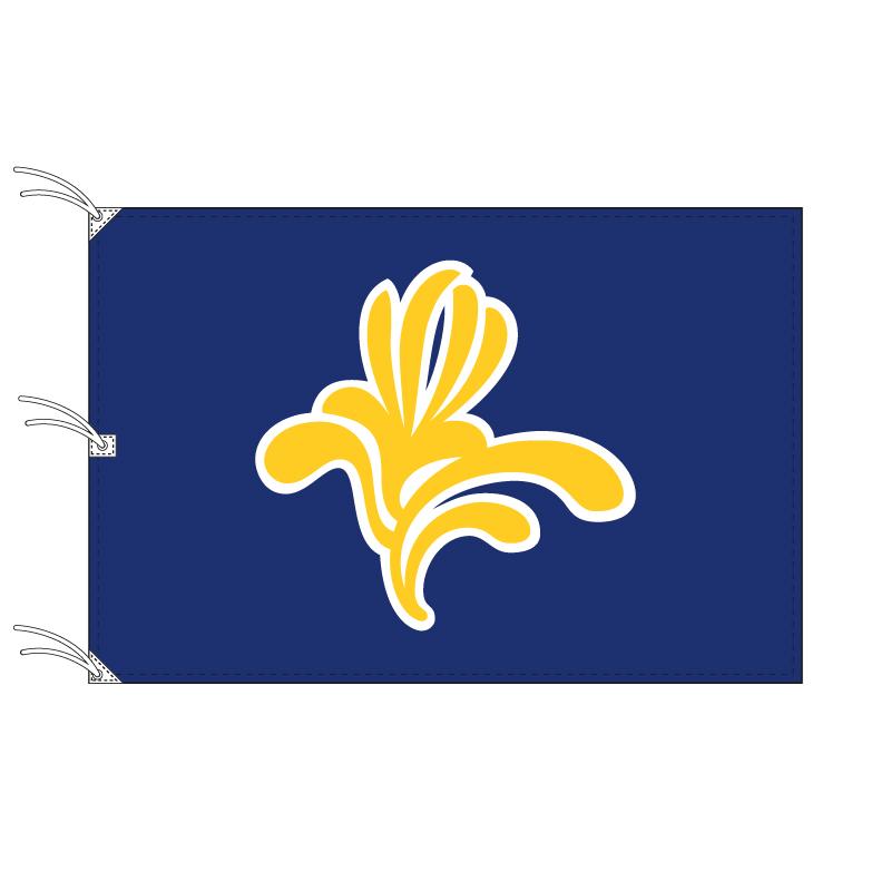 ブリュッセル首都圏地域旗 ベルギーの地方の旗 140×210cm テトロン製 日本製 世界各国の州旗シリーズ