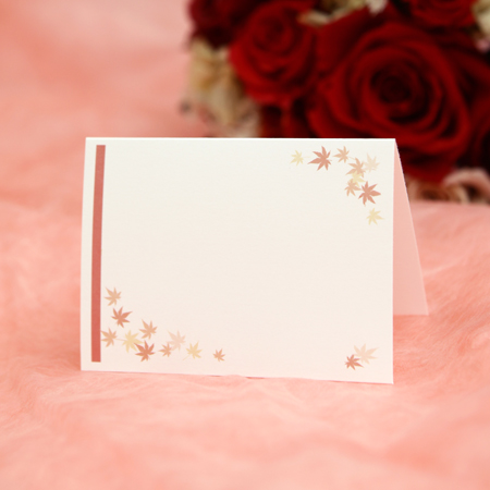 Fan Mary Elegant Maple 10 Piece Set Place Cards Wedding Wedding