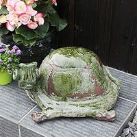信楽焼き手作りカメ置物!長寿・金運にご利益あり!陶器かめ置き物/カメ/やきもの/縁起物/しがらき/庭/置物/[ok-0010]