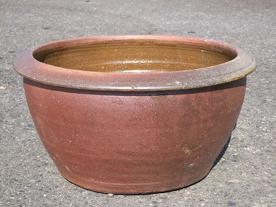 水鉢 19-B 睡蓮鉢 水鉢 メダカ 金魚 飼育 鉢
