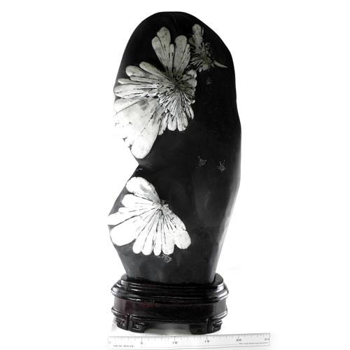 【送料無料】菊花石・クリサンスマムストーン(黒色石灰質粘板岩中の方解石)30 【あす楽対応】KIK-30