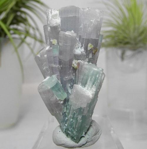 【送料無料】パライバトルマリン柱状結晶原石9  【あす楽対応】