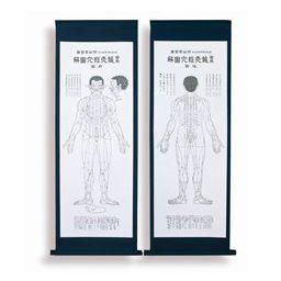 実用鍼灸経穴図解(表装掛軸付) 122×43.5cm 医道の日本社