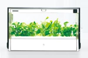 ユーイング(U-ING) 水耕栽培器(水耕栽培キット/水耕栽培セット) LED照明付GreenFarm(グリーンファーム) UH-A01E1
