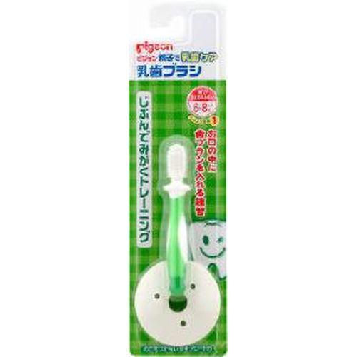 贈物 乳歯ブラシ 激安特価品 レッスン1 グリーン