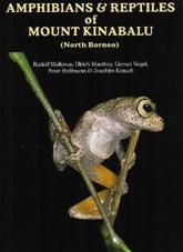 Amphibians & Reptiles of Mount Kinabaru ( North Borneo) ・ キナバル山の両生類と爬虫類 ECOユニバース(エコユニバース)