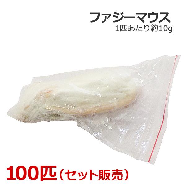 冷凍 ファジーマウス 100匹