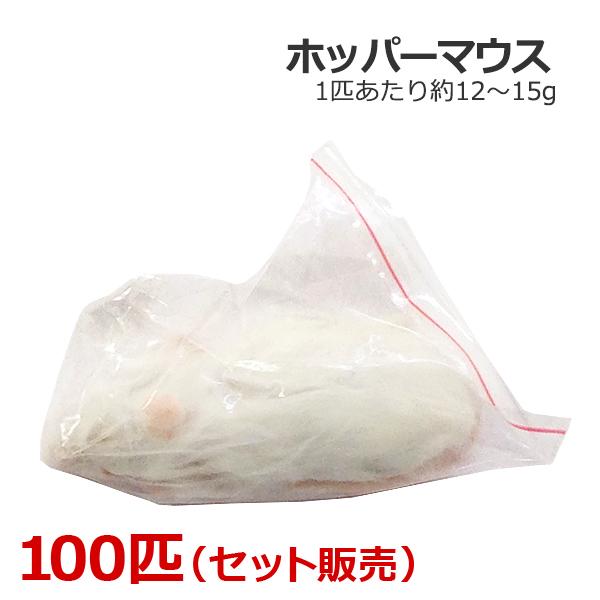 冷凍 ホッパーマウス 100匹
