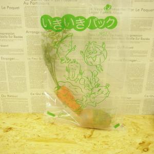 食品の新鮮さ長持ち ショッピング 超定番 いきいきパック 10枚セット 5kg用
