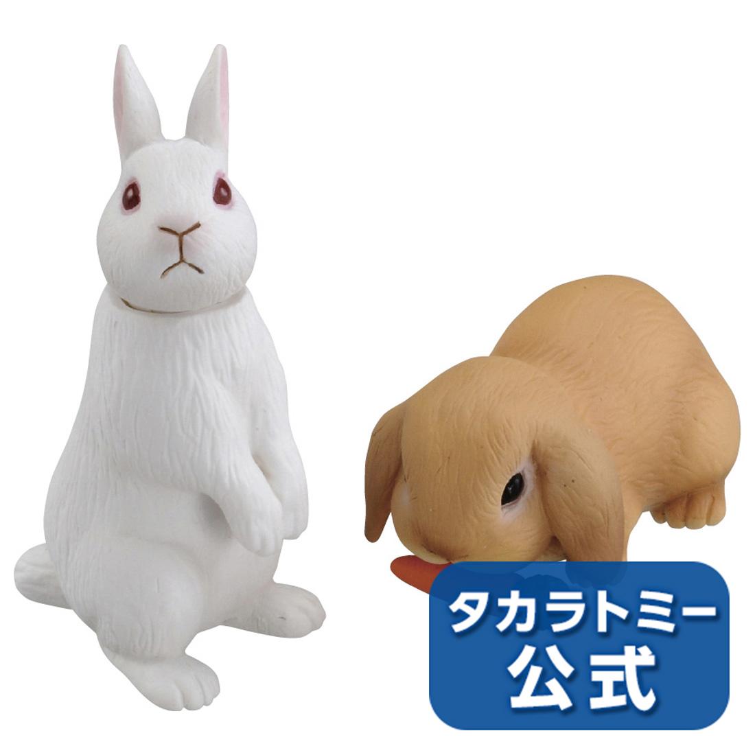 再入荷 予約販売 2018年10月25日発売タカラトミー公式店5 500円以上購入で送料無料 期間限定特価品 アニアAS-34ウサギ日本白色種ロップイヤー
