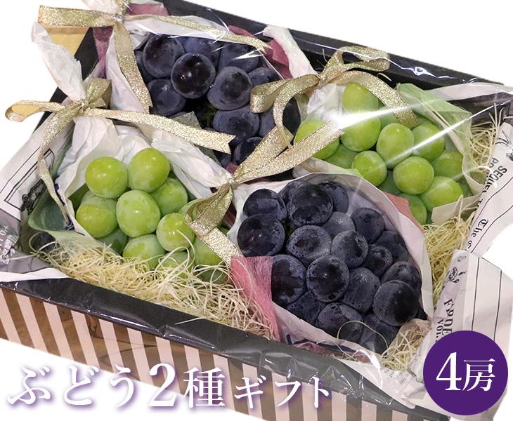 贈答用にぴったり ぶどう2種 4房ギフト 送料無料 巨峰 シャインマスカット ギフトボックス 各2房 ぶどう ブドウ 葡萄 お祝い セット 贈答 マスカット お取り寄せ ついに入荷 家庭用 お返し 贈り物 うまい 果物 フルーツ 新生活