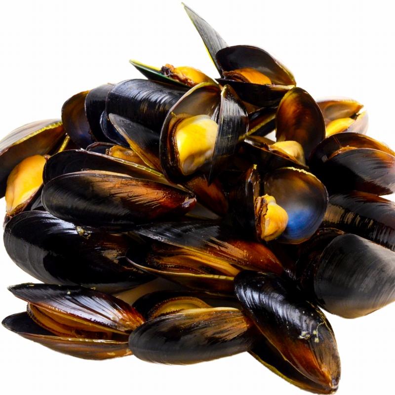 本格派の高級ムール貝をたっぷりと1kg 築地市場から新鮮なムール貝をお届けします ブイヤベース 買い物 パエリア等のイタリアン 地中海料理にもピッタリです 送料無料 ムール貝1kg ボイル 殻つきムール貝 500g×2パック 解凍後そのまま食べられます 輸入食材 ギフト パスタ ワイン蒸し 豊洲市場 イタリアン rn 安値 鍋 ムール貝通販 スパニッシュ パエリア 香草焼き